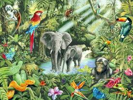 ゾウの壁紙 輸入 カスタム壁紙 PHOTOWALL / Jungle (e21717) 貼ってはがせるフリース壁紙(不織布) 【海外取り寄せのため1カ月程度でお届け】 【代引き不可】
