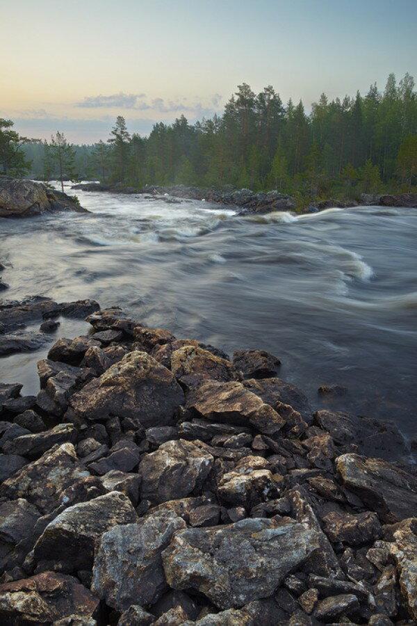 風景 景色 自然の壁紙輸入 カスタム壁紙 PHOTOWALL / Stream in Northern Sweden (e40438)貼ってはがせるフリース壁紙(不織布)【海外取り寄せのため1カ月程度でお届け】【代引き不可】.