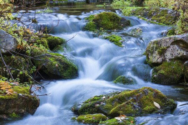 風景 景色 滝の壁紙輸入 カスタム壁紙 PHOTOWALL / Little Stream (e30773)貼ってはがせるフリース壁紙(不織布)【海外取り寄せのため1カ月程度でお届け】【代引き不可】.