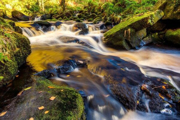川渓流 フォレスト 森 森林 自然の壁紙輸入 カスタム壁紙 PHOTOWALL / River Stream and Rocks (e310652)貼ってはがせるフリース壁紙(不織布)【海外取り寄せのため1カ月程度でお届け】【代引き不可】