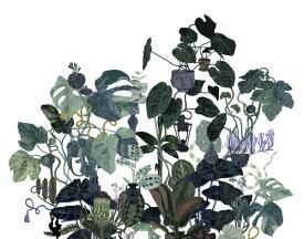 ボタニカル 植物 ダークグリーンの壁紙 輸入 カスタム壁紙 PHOTOWALL / Tangled Tree II (e313575) 貼ってはがせるフリース壁紙(不織布) 【海外取り寄せのため1カ月程度でお届け】 【代引き不可】 壁紙屋本舗