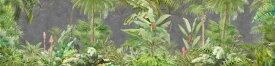 ボタニカル 植物 木 草 グレーの壁紙 輸入 カスタム壁紙 PHOTOWALL / Deep Tropical on Concrete Wall (e317906) 貼ってはがせるフリース壁紙(不織布) 【海外取り寄せのため1カ月程度でお届け】 【代引き不可】