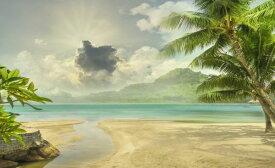 ヤシの木 砂浜 雲 空の壁紙 輸入 カスタム壁紙 PHOTOWALL / Island Beach (e318014) 貼ってはがせるフリース壁紙(不織布) 【海外取り寄せのため1カ月程度でお届け】 【代引き不可】