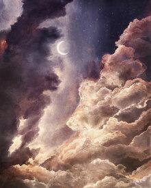 空 月 雲 紫 パープル 自然の壁紙 輸入 カスタム壁紙 PHOTOWALL / Moon in Sunlight (e318310) 貼ってはがせるフリース壁紙(不織布) 【海外取り寄せのため1カ月程度でお届け】 【代引き不可】