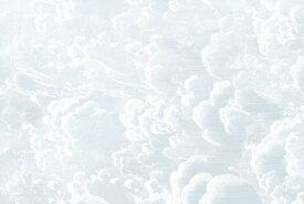 雲 空 アンティークの壁紙 輸入 カスタム壁紙 PHOTOWALL / Cradled in Clouds - Blue (e319903) 貼ってはがせるフリース壁紙(不織布) 【海外取り寄せのため1カ月程度でお届け】 【代引き不可】 壁紙屋本舗