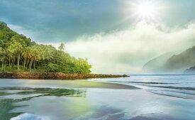 海岸 浜辺 ビーチ 雲 空の壁紙 輸入 カスタム壁紙 PHOTOWALL / Tropical Palm Beach (e318945) 貼ってはがせるフリース壁紙(不織布) 【海外取り寄せのため1カ月程度でお届け】 【代引き不可】