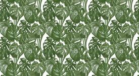葉 トロピカル ボタニカル パターン 緑 グリーンの壁紙 輸入 カスタム壁紙 PHOTOWALL / Tropical Leaf Palm (e318522) 貼ってはがせるフリース壁紙(不織布) 【海外取り寄せのため1カ月程度でお届け】 【代引き不可】