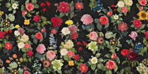 花 バラ ひまわり ピンク 黒 ブラック パターン 花柄の壁紙 輸入 カスタム壁紙 PHOTOWALL / Flower Samba (e320963) 貼ってはがせるフリース壁紙(不織布) 【海外取り寄せのため1カ月程度でお届け】 【