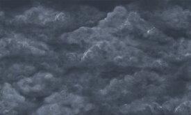 雲 空 紺 ネイビーの壁紙 輸入 カスタム壁紙 PHOTOWALL / Tender Clouds - Dark Blue (e320867) 貼ってはがせるフリース壁紙(不織布) 【海外取り寄せのため1カ月程度でお届け】 【代引き不可】
