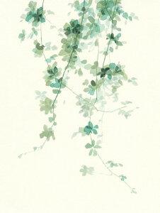 植物 葉 ツタ 水彩画 ナチュラル 緑 グリーンの壁紙 輸入 カスタム壁紙 PHOTOWALL / Trailing Vines II (e319075) 貼ってはがせるフリース壁紙(不織布) 【海外取り寄せのため1カ月程度でお届け】 【代引