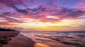 海 海岸 ビーチ 波 空 雲 自然 風景 ピンクの壁紙 輸入 カスタム壁紙 PHOTOWALL / Violet Dream (e326036) 貼ってはがせるフリース壁紙(不織布) 【海外取り寄せのため1カ月程度でお届け】 【代引き不可】
