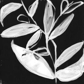 植物 葉 イラスト 黒 ブラック 白 ホワイト モノクロ モノトーンの壁紙 輸入 カスタム壁紙 PHOTOWALL / Quirky White Leaves (e324610) 貼ってはがせるフリース壁紙(不織布) 【海外取り寄せのため1カ月程度でお届け】 【代引き不可】