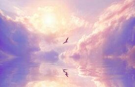 カモメ 鳥 空 雲 ピンク 紫 パープルの壁紙 輸入 カスタム壁紙 PHOTOWALL / Seagull and Violet Clouds (e325025) 貼ってはがせるフリース壁紙(不織布) 【海外取り寄せのため1カ月程度でお届け】 【代引き不可】