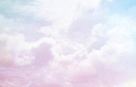雲 空 ピンク 青 ブルー 水色 グラデーション ゆめかわの壁紙 輸入 カスタム壁紙 PHOTOWALL / Cloudy Skies (e325045) 貼ってはがせるフリース壁紙(不織布) 【海外取り寄せのため1カ月程度でお届け】 【代引き不可】