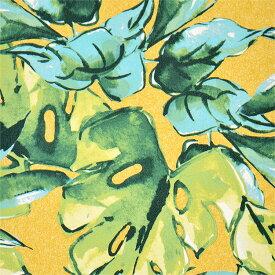 【ボタニカルの壁紙セレクション】生のり付き 国産 壁紙 クロス SLV-1041壁紙 のりつき クロス生のり付き壁紙(販売単位1m)しっかり貼れる生のりタイプ(原状回復できません)【今だけ10m以上でマスカープレゼント】 壁紙屋本舗
