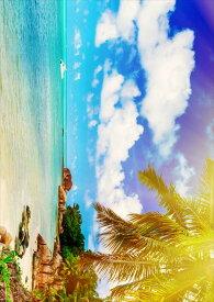 ポスター ウォールステッカー シール式ステッカー 飾り 420×594mm A2 写真 フォト 壁 インテリア おしゃれ  剥がせる wall sticker poster 014987 景色 風景 夏 海 南国 ヤシの木