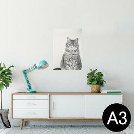 ポスター ウォールステッカー シール式ステッカー 飾り 297×420mm A3 写真 フォト 壁 インテリア おしゃれ  剥がせる wall sticker poster 002901 猫 動物 写真