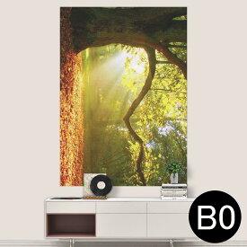 ポステッカー ポスター ウォールステッカー シール式ステッカー 飾り 1030mm×1456mm B0 写真 フォト 壁 インテリア おしゃれ 剥がせる wall sticker poster 014991 景色 自然 風景 写真 木 樹木