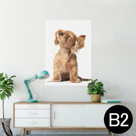 ポスター ウォールステッカー シール式ステッカー 飾り 515×728mm B2 写真 フォト 壁 インテリア おしゃれ  剥がせる wall sticker poster 001245 犬 ダックスフント 動物