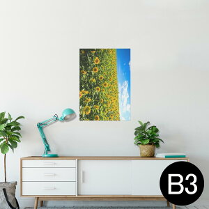ポスター ウォールステッカー シール式ステッカー 飾り 364×515mm B3 写真 フォト 壁 インテリア おしゃれ  剥がせる wall sticker poster 007936 写真 花 フラワー 向日葵 ひまわり