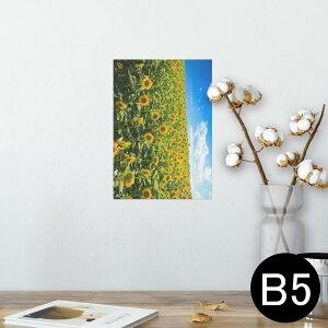 ポスター ウォールステッカー シール式ステッカー 飾り 182×257mm B5 写真 フォト 壁 インテリア おしゃれ  剥がせる wall sticker poster 007936 写真 花 フラワー 向日葵 ひまわり