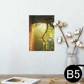 ポスター ウォールステッカー シール式ステッカー 飾り 182×257mm B5 写真 フォト 壁 インテリア おしゃれ  剥がせる wall sticker poster 014991 景色 自然 風景 写真 木 樹木