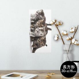 ポスター ウォールステッカー 長方形 シール式ステッカー 飾り 30×16cm Ssize 壁 インテリア おしゃれ 剥がせる wall sticker poster 005928 写真 動物 猫 ねこ