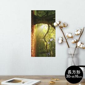 ポスター ウォールステッカー 長方形 シール式ステッカー 飾り 30×16cm Ssize 壁 インテリア おしゃれ 剥がせる wall sticker poster 014991 景色 自然 風景 写真 木 樹木