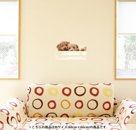 ウォールステッカー 飾り 60×60cm シール式 装飾 おしゃれ 壁紙 はがせる 剥がせる カッティングシート wall sticker 雑貨 DIY プチリフォーム パーティー イベント 賃貸 002770 アニマル 犬 動物 写真