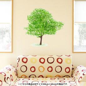 ウォールステッカー 飾り 60×60cm シール式 装飾 おしゃれ 壁紙 剥がせる DIY プチリフォーム パーティー 賃貸 015657 木 樹木 自然 植物