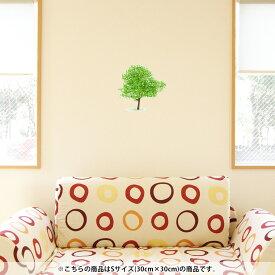 ウォールステッカー 飾り 30×30cm シール式 装飾 おしゃれ 壁紙 剥がせる DIY プチリフォーム パーティー 賃貸 015657 木 樹木 自然 植物
