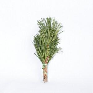 【定期購入可能】 高野槙 くくり 40cm 1束 お供え束 生花