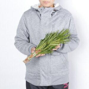 高野槇(こうやまき・コウヤマキ)のお供え用40cm