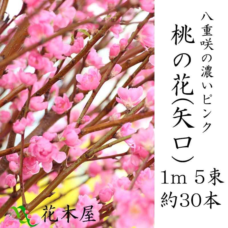 ひなまつり 桃の花 花桃 1m 5把 約30本 ひな祭り 雛祭り 春節 生け花 飾り 花 花材