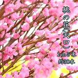 桃の花1m5把