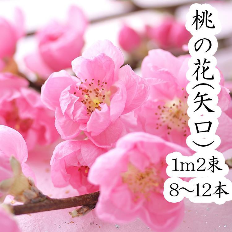 桃の花 ひなまつり 生花 飾り もものはな 矢口桃 100cm 2束 約10本
