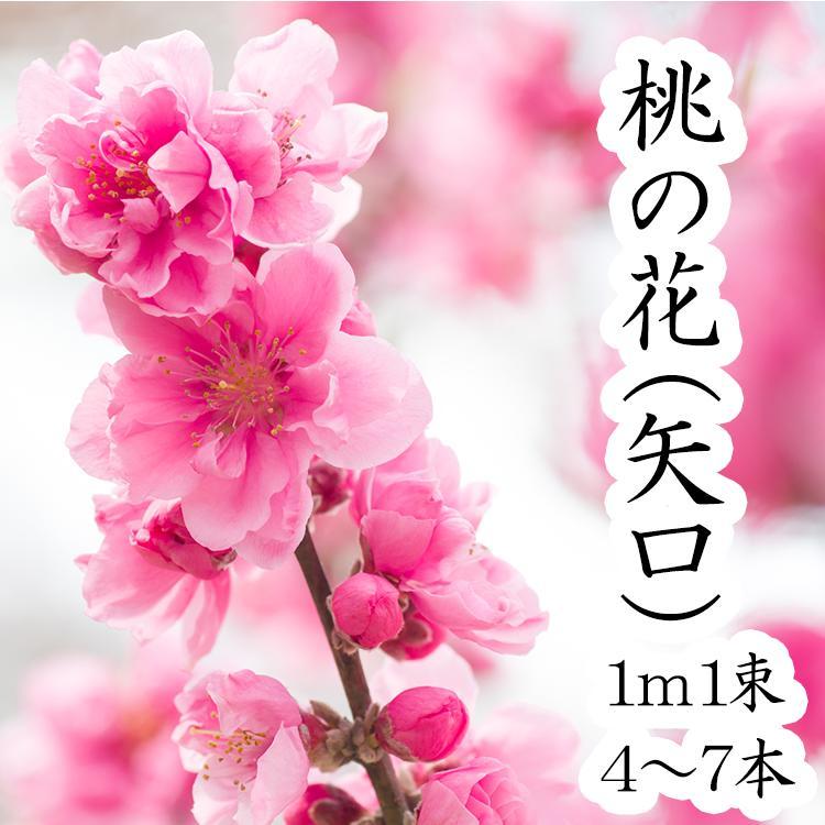 【2月1日ごろより発送開始】桃の花ひな祭り 花桃1m・1把(4本〜6本)ひなまつり 雛祭り 桃の節句 飾り 花 生花 花材 プレゼント