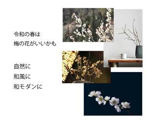 【先行予約本年12月お届け】【令和最初の新年をゆかりの梅の花で】梅の花一把5本程度120センチ前後木の枝令和祝い