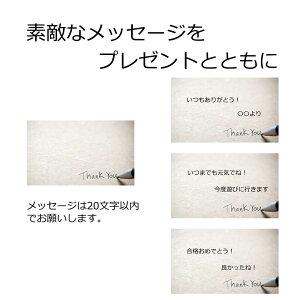 【父の日早割クーポン】紫陽花アジサイ花マジカル5号鉢父の日ブル—ピンクグラデーションラッピングメッセージカード可
