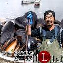 生ムール貝 大 1kg三陸宮城県産 漁師直送 活ムール貝(イガイ ムラサキ貝 カラス貝)