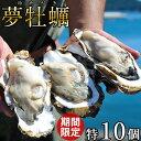生牡蠣 殻付き 特大 夢牡蠣 10個【送料無料】生食用 生ガキ 大粒生牡蠣 特大三陸 雄勝湾(おがつ湾)漁師直送 新鮮生が…