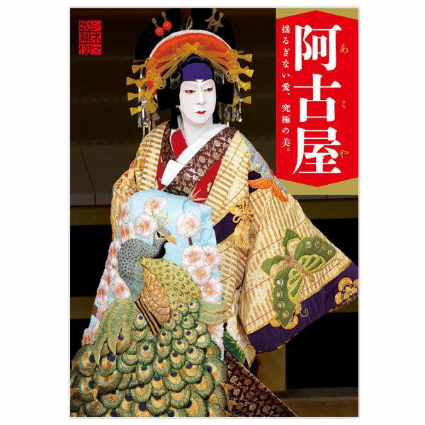 シネマ歌舞伎 阿古屋 劇場用プログラム歌舞伎 KABUKI パンフレット 筋書 映画 月イチ歌舞伎 松竹 玉三郎 演劇 芝居 和 伝統 文化