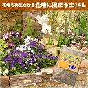 【培養土】花壇に混ぜる土14L×1袋