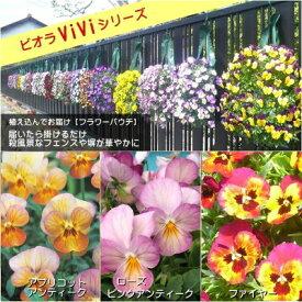 【ビオラフラワーパウチ】ViViシリーズ