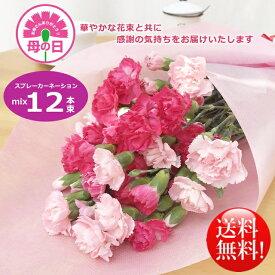 母の日ギフト!華やかカーネーションミックス12本花束!