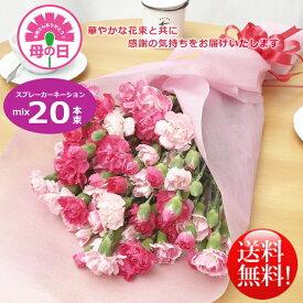 母の日ギフト!華やかカーネーションミックス20本花束!