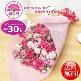 母の日ギフト!華やかカーネーションミックス30本花束!