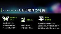 LED電球E26広配光タイプ60W形相当LDA7N-G-6T4・LDA8L-G-6T4昼白色相当・電球色相当アイリスオーヤマ【●5】
