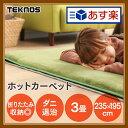 ホットカーペット 3畳用 TWA-3000BI送料無料 カーペット 3畳 カーペット本体 暖房 冬 TEKNOS グレー【D】