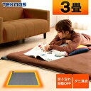 ホットカーペット 3畳 本体 195×235 TEKNOS 電気カーペット 3畳 折り畳み収納可能 暖房面積切替 ダニ退治 こたつ併用…